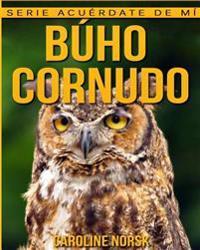 Buho Cornudo: Libro de Imagenes Asombrosas y Datos Curiosos Sobre Los Buho Cornudo Para Ninos