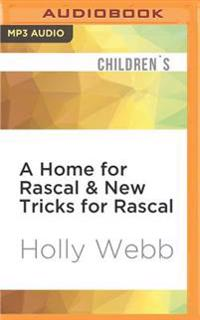 A Home for Rascal & New Tricks for Rascal