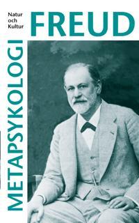 Metapsykologi