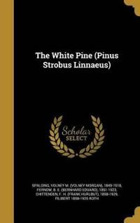 WHITE PINE (PINUS STROBUS LINN