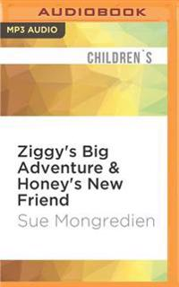 Ziggy's Big Adventure & Honey's New Friend