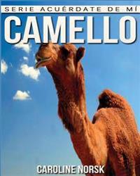 Camello: Libro de Imagenes Asombrosas y Datos Curiosos Sobre Los Camello Para Ninos