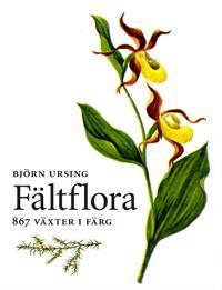 Fältflora : kärlväxter