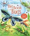 Big Book of Big Bugs
