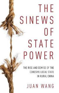 The Sinews of State Power