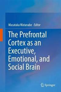 The Prefrontal Cortex As an Executive, Emotional, and Social Brain
