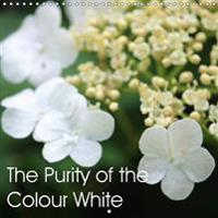 Purity of the Colour White 2017
