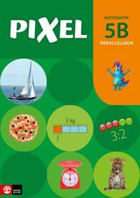 Pixel 5B Parallellbok, andra upplagan