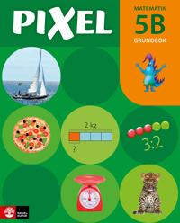 Pixel 5B Grundbok, med digital färdighetsträning, andra upplagan