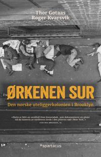 Ørkenen Sur - Thor Gotaas, Roger Kvarsvik pdf epub