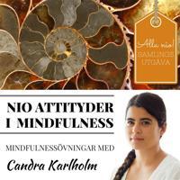 SAMLINGSUTGÅVA: Nio attityder i mindfulness av Candra Karlholm