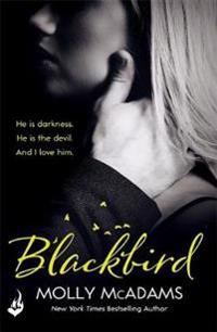 Blackbird - a story of true love against the odds