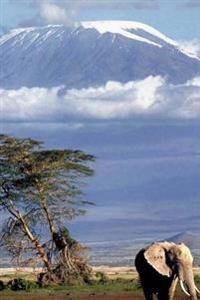 Journal: Mount Kilimanjaro