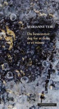 Du bestemmer deg for at dette er et minne - Marianne Teie pdf epub