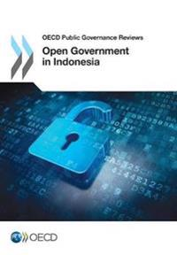 Open Government in Indonesia