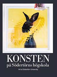 Konsten på Södertörns högskola