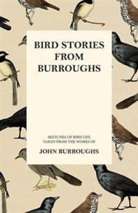 Bird Stories from Burroughs - Sketches of Bird Life Taken from the Works of John Burroughs