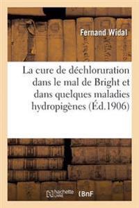 La Cure de Dechloruration Dans Le Mal de Bright Et Dans Quelques Maladies Hydropigenes
