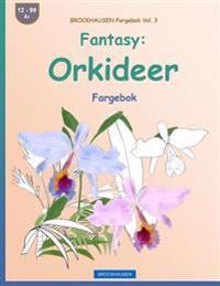 Brockhausen Fargebok Vol. 3 - Fantasy: Orkideer: Fargebok