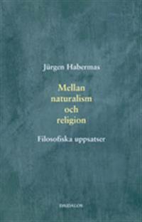 Mellan naturalism och religion : filosofiska uppsatser