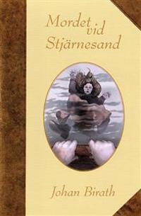 Mordet vid Stjärnesand : en dokumentärroman