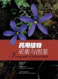 药用植物采集与&#22 - 世纪集团