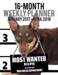 2017-2018 Weekly Planner - Most Wanted Kelpie: Daily Diary Monthly Yearly Calendar