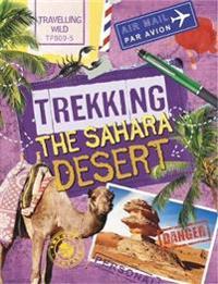Trekking the Sahara Desert