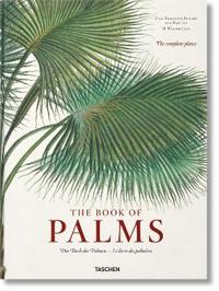 von Martius. The Book of Palms