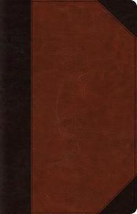 ESV Large Print Thinline Reference Bible (Trutone, Brown/Cordovan, Portfolio Design)