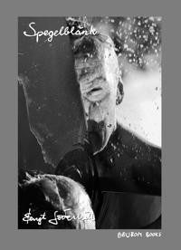 Spegelblänk : poetiska återspeglingar i fem delar : sordo i B-moll