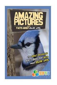 Amazing Pictures and Facts about Blue Jays: The Most Amazing Fact Book for Kids about Blue Jays