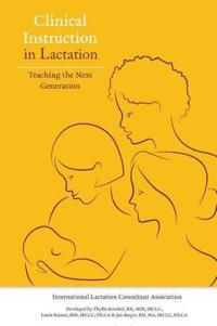 Clinical Instruction in Lactation: Teaching the Next Generation