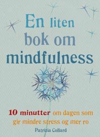 En liten bok om mindfulness; 10 minutter om dagen som gir mindre stress og mer ro