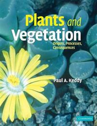 Plants And Vegetation