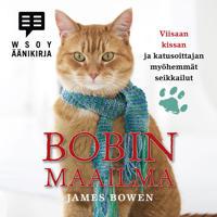 Bobin maailma - Viisaan kissan ja katusoittajan myöhemmät seikkailut