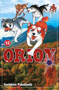 Orion 13