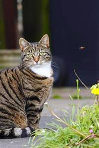 A Sweet Tabby Cat Sitting in the Garden Journal: 150 Page Lined Notebook/Diary