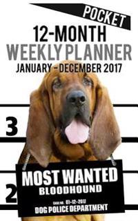 2017 Pocket Weekly Planner - Most Wanted Bloodhound: Daily Diary Monthly Yearly Calendar