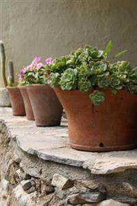Charming Terracotta Flowerpots on a Stone Wall in Crete Greece Journal: 150 Page Lined Notebook/Diary