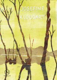 Regn - Josefine Klougart | Laserbodysculptingpittsburgh.com