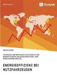 Energieeffizienz Bei Nutzfahrzeugen. Technischer Und Wirtschaftlicher Aspekte Von Biokraftstoffen Und Dieselkraftstoff