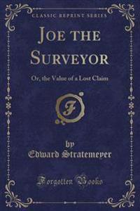 Joe the Surveyor