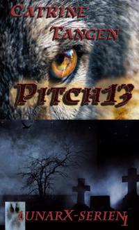 Pitch13