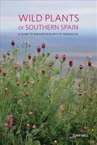 Wild Plants of Southern Spain
