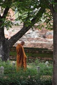 A Buddhist Monk Wearing an Orange Robe in Contemplation in Nature Journal: 150 Page Lined Notebook/Diary