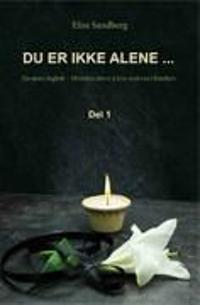Du er ikke alene-; en mors dagbok - Elise Sandberg pdf epub