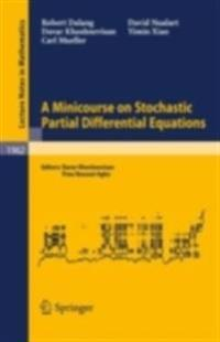Minicourse on Stochastic Partial Differential Equations