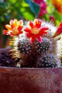 An Awesome Mammillaria Cactus Plant in Bloom Journal: 150 Page Lined Notebook/Diary