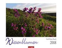 Wiesenblumen - Kalender 2018